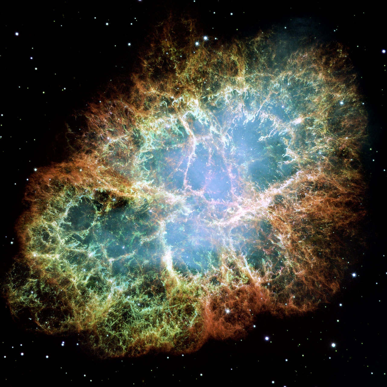 The importance of supernovae to the whole life